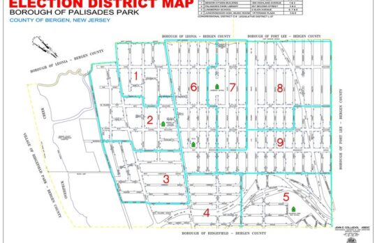 Election District Map